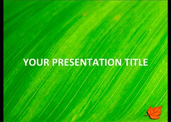 Green Leaf presentation template