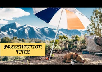 Free presentation template Dogs
